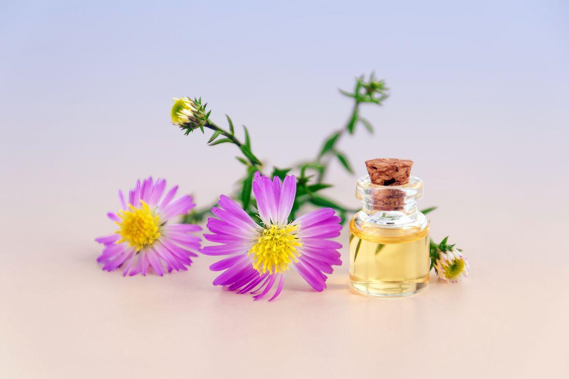 Фото бесплатно цветение, цветущий, цвести, бутылка, яркий, крышка пробки, цветы, стеклянная бутылка, лепестки, ботанический, духи, косметология, натуральная косметика, цветок, пурпурный, цветы