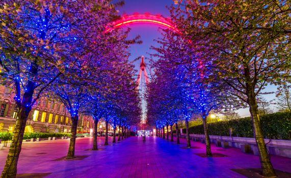 Photo free illumination, London, Nichols