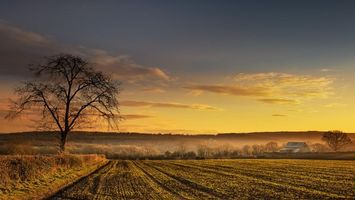 Фото бесплатно поле, пейзаж, дом