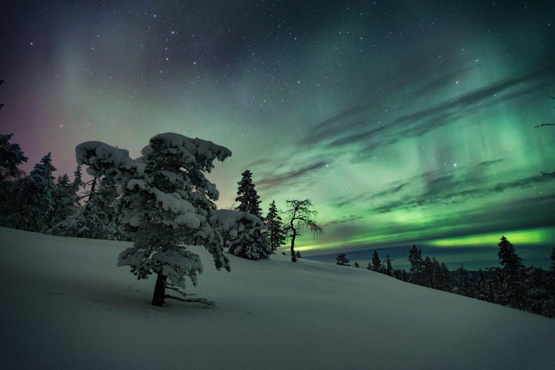 Фото бесплатно Лапландия, Финляндия, зима, снег, сугробы, сияние, деревья, пейзаж, пейзажи