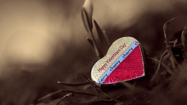 Фото бесплатно шоколад, сердечко, праздник
