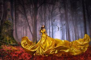 Бесплатные фото Леди в золоте,прекрасная незнакомка,лес,осень,деревья,туман,птицы