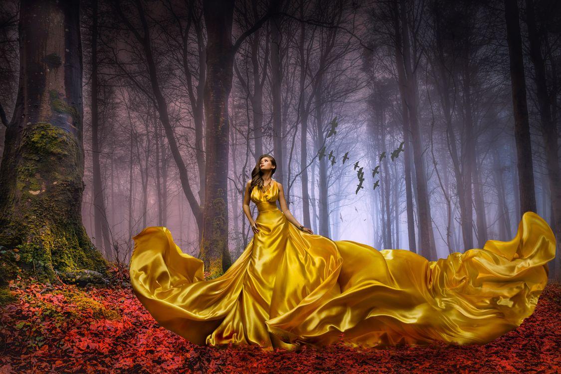 Фото бесплатно Леди в золоте, прекрасная незнакомка, лес - на рабочий стол
