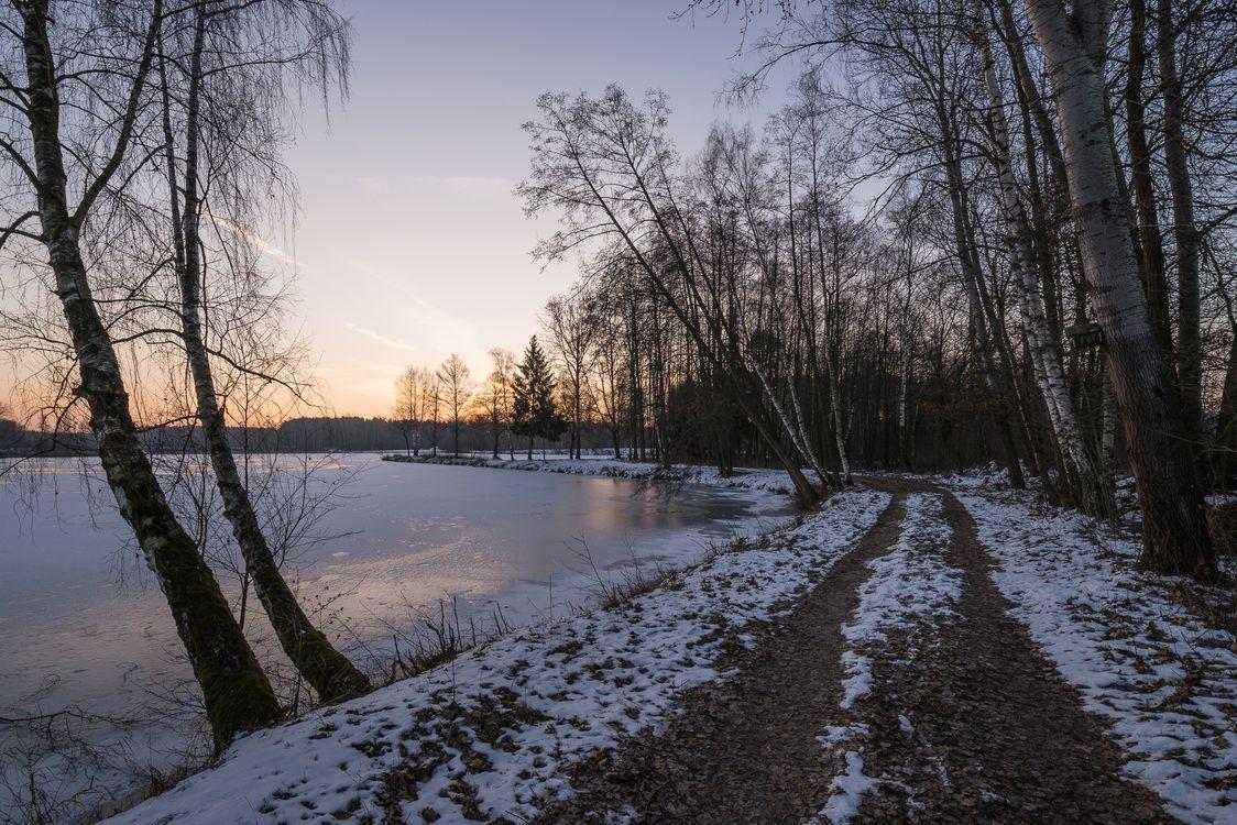 Обои зима, закат солнца, водоём, озеро, дорога, деревья, лес картинки на телефон