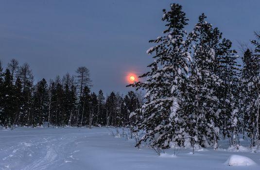 Фото бесплатно ночь, пейзаж, природа