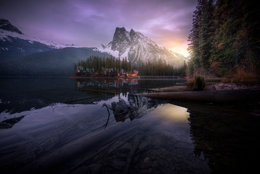 Photo free trees, Emerald Lake, night