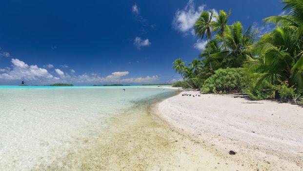 Фото бесплатно Атолл Рангироа, Французская Полинезия, море