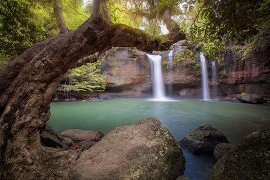 Фото водопад, деревья онлайн бесплатно