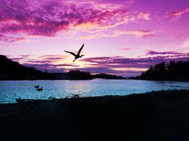 Фото бесплатно закат, закаты, небо