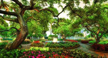 Бесплатные фото Парк Прескотт,Портсмут,Англия,парк,сад,весна,цветы