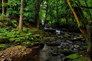 Фото бесплатно скалы, пруд, природа