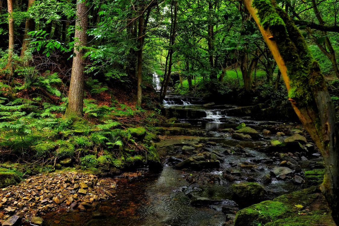 Фото бесплатно скалы, пруд, природа - на рабочий стол