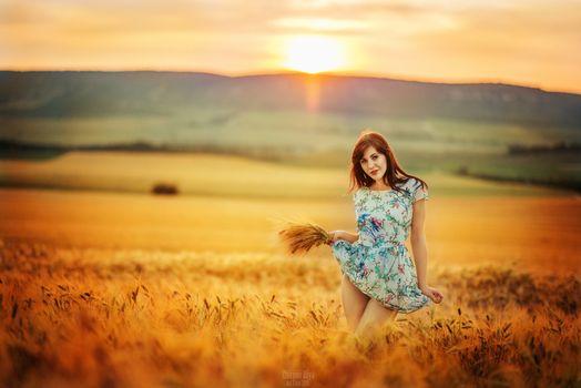 Photo free field, Lifting Skirt, sunset