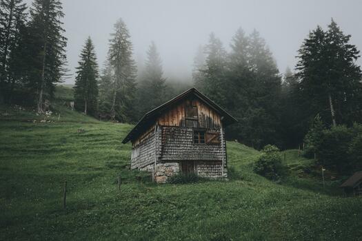 Фото бесплатно туман, деревья, дом