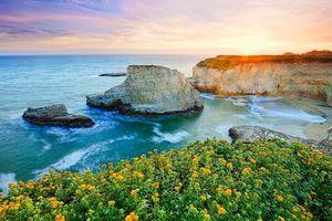 Бесплатные фото закат,море,скалы,берег,волны,цветы,пейзаж