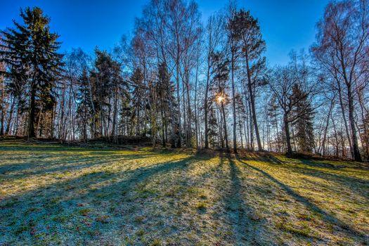Заставки холм, деревья, природа