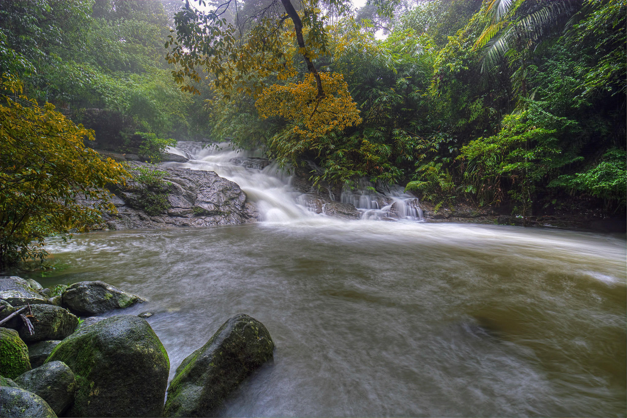 Обои река, водоём, водопад, джунгли