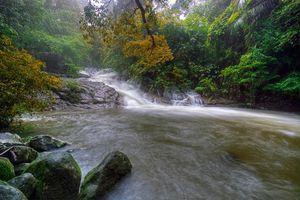 Бесплатные фото река,водоём,водопад,джунгли,лес,деревья,природа