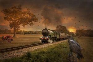 Бесплатные фото закат,поле,железная дорога,паровоз,ворон,art