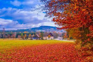 Фото бесплатно Германия, осень, поле