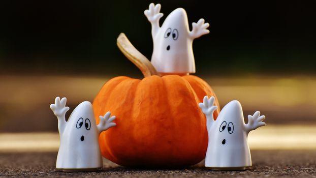 Photo free pumpkin, vegetable, ghost figures