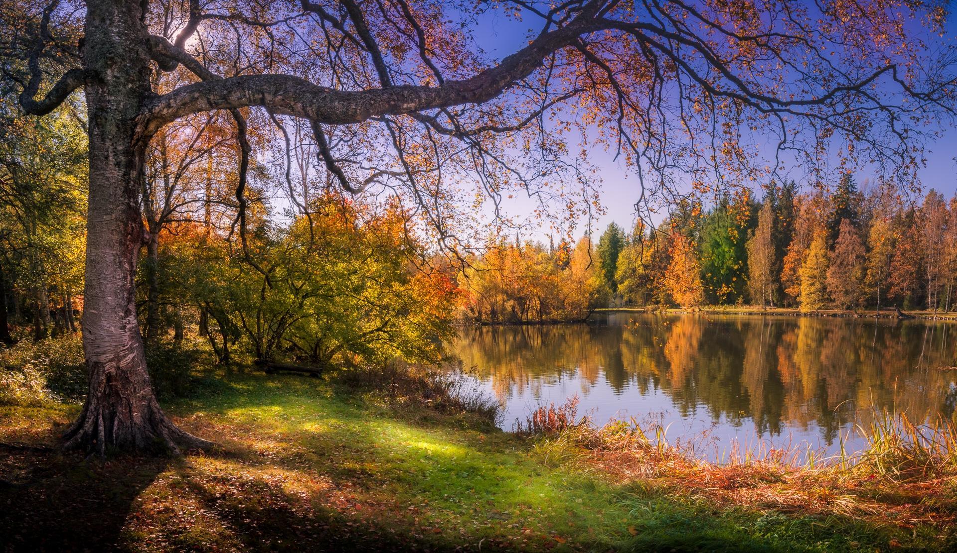 Обои Финляндия, осень, озеро, лес