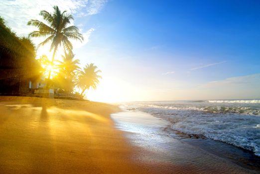 Фотографии море, пляж на телефон