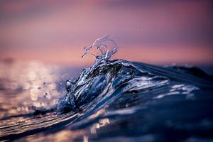 Фото бесплатно макро, вода, море