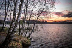 Фото бесплатно На берегу Учинского озера, осень, Учинское озеро