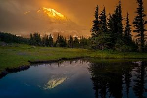 Бесплатные фото Mount Rainier National Park,Washington,Альпийский луг,закат,горы,деревья,пейзаж