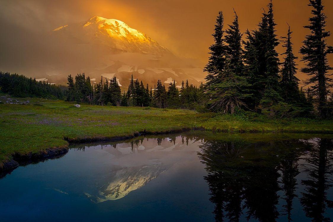 Фото бесплатно деревья, Альпийский луг, закат - на рабочий стол