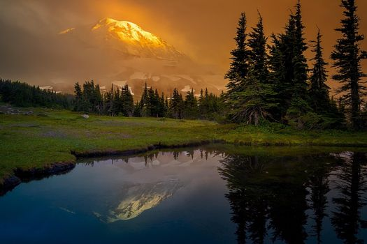 Photo free trees, Alpine meadow, sunset