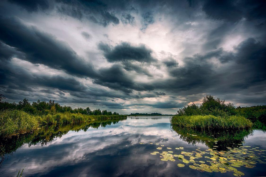 Фото бесплатно Нидерланды, озеро, болото - на рабочий стол