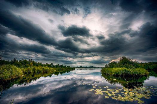 Бесплатные фото Нидерланды,озеро,болото,тучи,природа,пейзаж