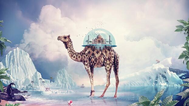 Фото бесплатно фотошоп, пингвин, Wallpaper Giraffe
