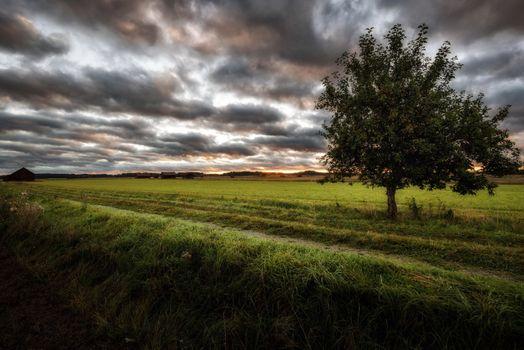 Фото бесплатно поле, земля, тучи