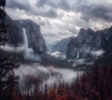 Заставки горы, туман, деревья