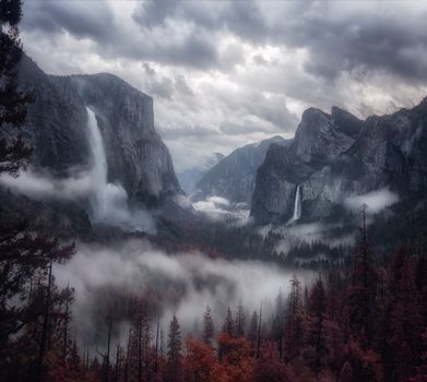 Photo free mountains, fog, trees