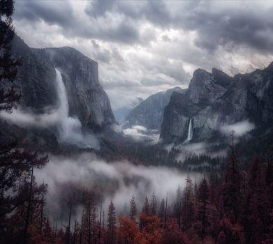 Фото бесплатно горы, туман, деревья