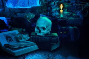 Бесплатные фото натюрморт,стол,книги,череп,кошка,свеча,фэнтези