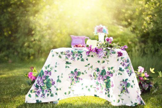Photo free flower, summer, green