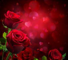 Фото бесплатно день святого валентина, день всех влюбленных, праздник, сердце, сердечко, любовь, чувства, красный, композиция, признание, розы, цветы, боке, ткань, фон, трио, бутоны, поздравление