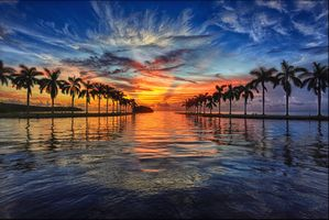 A wonderful evening in Miami · free photo