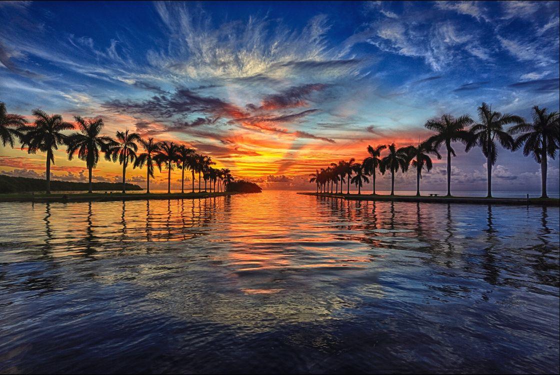 Чудесный вечер в Майами · бесплатное фото