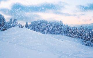 Бесплатные фото зима,снег,холмы,горка,деревья,пейзаж