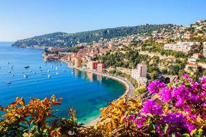 Бесплатные фото Ницца,море,яхты,цветы