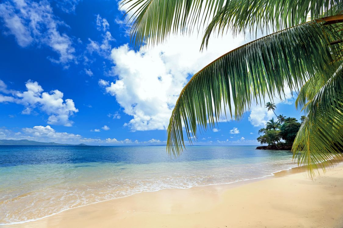 Free picture of the beach, tropics