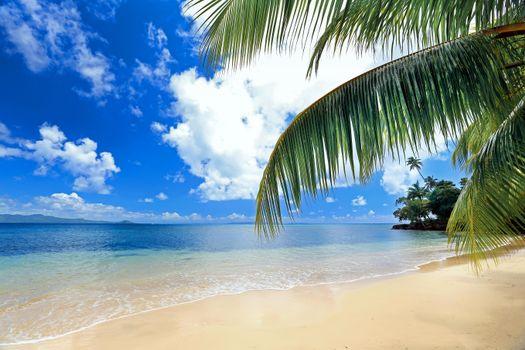 Бесплатная картинка пляж, тропики