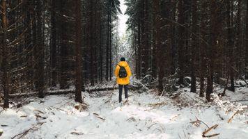 Бесплатные фото человек,лес,снег,зима,деревья,man,forest
