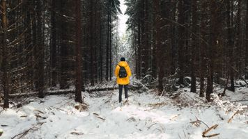 Photo free man, forest, snow
